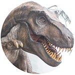 Dino150